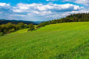 Yoga in der malerischen Eifel Landschaft