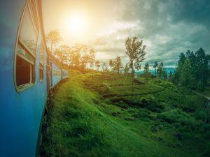 Natur genießen im Yoga Retreat Sri Lanka